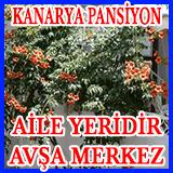 Avşa KANARYA PANSİYON