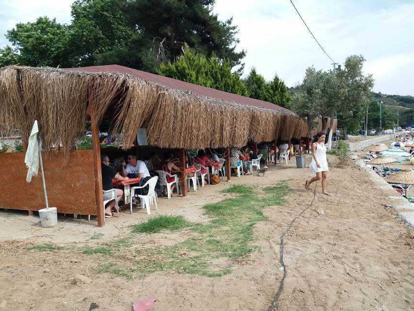 Avşa Adası Çınar Koyu Apart 08