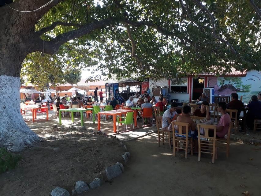 Avşa Adası Çınar Koyu Apart 26