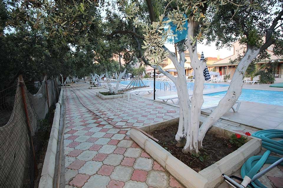 Avşa Afissia Garden Hotel Havuz Başı Hamak